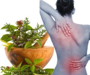 Народное лечение поясничного остеохондроза