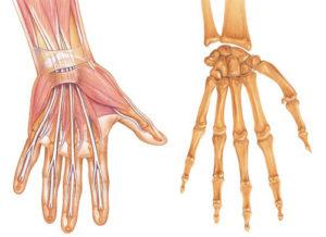 как правильно лечить лучезапястный сустав