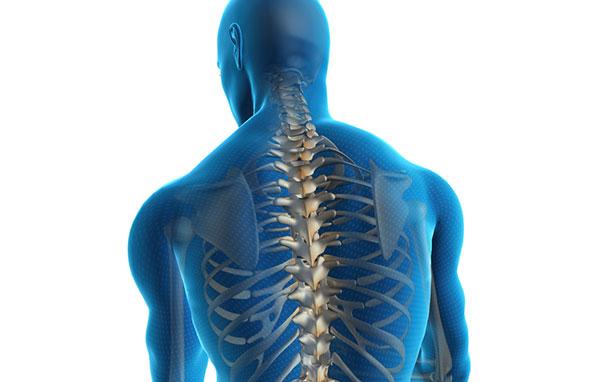 Спондилез – почему возникает? Симптомы, диагностика, лечение