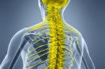 Хондроз грудного отдела – причины, симптомы, лечение