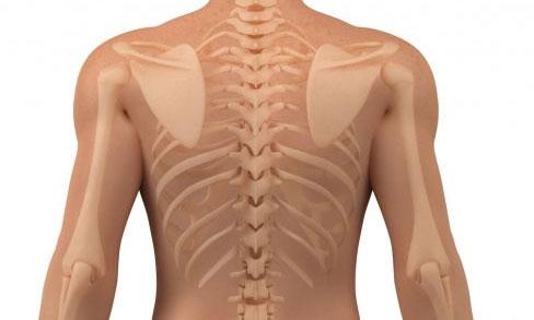 Деформирующий спондилоартроз: основные причины, симптомы и лечение